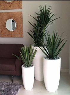 Pflanzen - My creative garden decor list House Plants Decor, Office Plants, Bedroom Plants, Farmhouse Bedroom Decor, Interior Plants, Home Deco, Indoor Plants, Living Room Designs, Planters