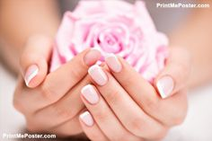 Poster of Beautiful woman's nails with french manicure  and rose #poster, #printmeposter, #mousepad, #tshirt