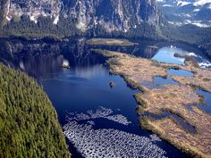 Take action! Protect the Misty Fjords from the KSM mega-mine