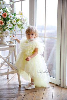 Newborn Girl Dresses, Dress Girl, Girls Dresses, Baby Dresses, Baby Birthday Dress, First Birthday Dresses, Puffy Dresses, Flower Dresses, Fairy Princess Costume