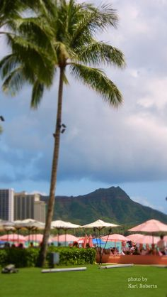 View of Diamond Head from the front lawn of the Royall Hawaiian hotel