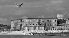 Colonia Motta-Marina di Massa - null