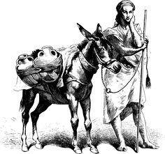 Als ein Esel ein Götterbild auf dem Rücken trug