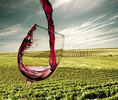 Jak originálně využít (nedopité) víno