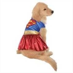 Rubies Costume Co 18839 Wonder Woman Deluxe Pet Costume Size Large Supergirl Halloween Costume, Comic Costume, Superman Costumes, Pet Halloween Costumes, Pet Costumes, Dog Halloween, Morris Costumes, Wonder Woman, Dog Leash