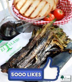 5.000 seguidores en Facebook