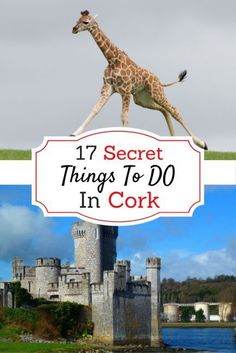 17 Secret Things to Do in Cork – Hidden Ireland