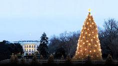 America's Best Tree-Lighting Ceremonies