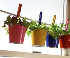 Container Gardening for Children! Get them excited about gardening!