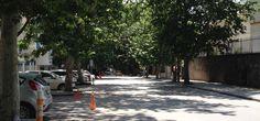 Kumrular Sokak'tan geçtim bir pazar günü #ankara