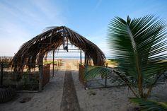 Head to Goa, India - true paradise found!