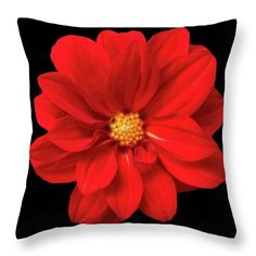 This pillow and many many more you can find at johanna-hurmerinta.pixels.com Warmly welcome to visit my art and home decor page :)