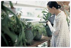 桐島かれんさん Garden Dress, Mori Girl, Dream Garden, Indoor Plants, Flower Pots, Love Fashion, Style Inspiration, My Style, Green