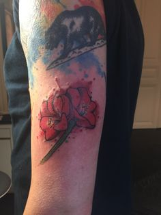 This is dedicated to my late mother who died three weeks ago. The Amaryllis was her favorite flower during the cold, dark months of fall and winter. I Tattoo, Watercolor Tattoo, Cold, Flower, Dark, Winter, Winter Time, Temp Tattoo, Flowers