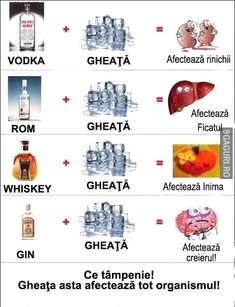 The ice is dangerous Vodka, Whisky, Wtf Moments, Laugh A Lot, Wine And Liquor, Funny Video Memes, Ron, Life Humor, Haha
