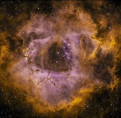 regram @morefield Here is the Rosette #Nebula in two #narrowband wavelengths - the Orange is glowing at the Hydrogen wavelength and the purple is light being reflected in the Oxygen III wavelength.  If you had eyes the size of dinner plates you might see this as being s large red blotch in the sky.  But I like using the narrow wavelengths to better show the structure and depth.  5 inch #telescope taken from my #SoCal backyard.  #Astronomy #astrophotography #space #nightshot #longexposure…
