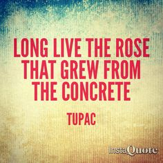 Long live the rose that grew from the concrete - Tupac