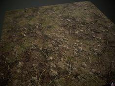 """ArtStation - Procedural Forest texture (PBR), Arseniy """"SenChi"""" Smirnov"""