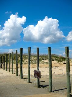 It's crazy what lies beyond this fence!  Outer Banks North Carolina