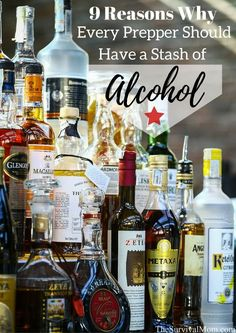 9 Reasons Why Every Prepper Should Have a Stash of Alcohol via The Survival Mom -- A stash of alcohol, from rum to wine, is a smart strategy for survival. Preppers should consider having a stash for these 9 reasons. Urban Survival, Survival Food, Wilderness Survival, Survival Prepping, Outdoor Survival, Emergency Preparedness, Survival Skills, Prepper Food, Survival Supplies