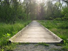 Image result for pathway pictures