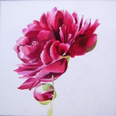 Peony watercolor.. hmm... maybe I could get an 'artistic rendition' done of my…