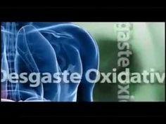 MegaHealth - ANTIOXIDANTES - Assaí Mega Capsulas o Jugo.