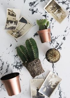 Poppytalk: 5 Minute DIY - Copper Planter Pots