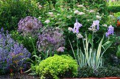 Лятото е времето, когато стайните цветя се развиват буйно, за това именно в този период те изискват особено внимание.