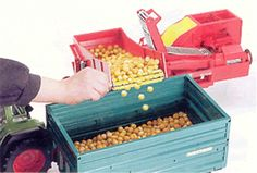 02130 Potatoe harvester GRIMME SE 75 - 30