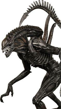The Xenomorph action figure from Alien Vs Predator - Requiem
