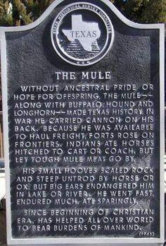Muleshoe Texas mule historical marker