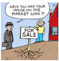Our Frisco CO real estate agents can make sure this doesn't happen to you!! http://coloradomtnproperties.com  #realestate #summitcountyrealestate #realestatehumor #FSBOcartoon #friscocolorado #friscocorealestate