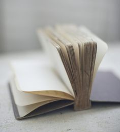 I would love to have a book like this, and simply write down every little thing that I should be thankful of that happened that day.