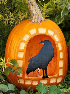 """Create this eerie crow pumpkin carving to set out on Halloween night. The watchful painted bird is perched on the sill of a """"window"""" carved into a bright orange pumpkin. Editor's Tip: After completing the design, spray with varnish to set the paint."""