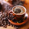 Coffee | Coffee Beans Manufacturers, Exporters & Suppliers  in India