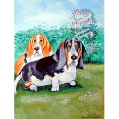 633 Best Basset Hound Drawings Images In 2019 Basset