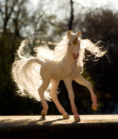 Willow the Unicorn Foal III by SovaeArt.deviantart.com on @deviantART