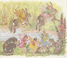 Molly Brett Illustration