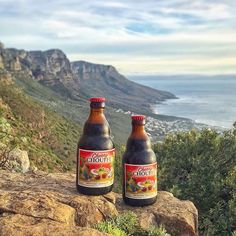 |  cherry sunsets 🍻| Another classic Cape Town sunset & this time my companion was Cherry Chouffe. My first time trying them out & loved the combination of sweet and sour. Thanks to the @belgianbeercompany for always keeping up to date with new and unique Belgian beers. 
