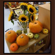 """Falling Into Autumn - Stimulating Learning Autumnal treasures ready to explore from Rachel ("""",) Autumn Eyfs Activities, Forest School Activities, Halloween Activities, Toddler Activities, Autumn Crafts, Autumn Art, Autumn Ideas, Autumn Display Eyfs, Room On The Broom"""
