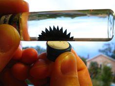 FERROFLUIDES Pour créer un ferrofluide, rien de plus simple, suivez la recette ! Il faut tout simplement se munir d'une cartouche d'encre à imprimante noire. Il faut verser celle-ci dans un récipient puis y ajouter deux cuillères à soupe d'huile végétale pour lier le tout. Il faut ensuite bien mélanger afin que le liquide deviennent bien lisse et qu'il ne soit pas trop épais (si c'est le cas, rajoutez encore un peu d'huile). Une fois que cela est fait, munissez-vous d'un aimant