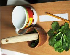 Science Fair: Leaf Chromatography