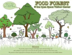 Food Forest Project Kickoff :: Sustainability Studies Program ...