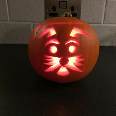 Sam the Schnauzer pumpkin! (Looked up a few designs and adapted to make this an ode to Sam)