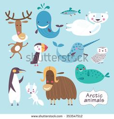 Cute animals of Arctic. Childish vector illustration of polar bear, penguin, puffin, snowy owl, narwhal, musk ox, whale, seal and arctic fox.