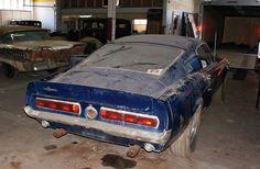 1967 Mustang - Hotrod