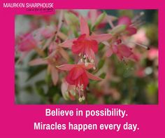 Believe in possibility. Miracles happen every day. #lifeofnolimits #feelalive #lifecoach #mentor #mindset #nlp #personaldevelopment #beyou #behappy #bestself #bestlife #achievegoals #success