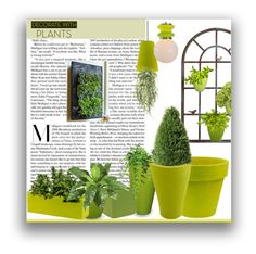 """Plants"" by marionmeyer on Polyvore featuring interior, interiors, interior design, Zuhause, home decor, interior decorating, Mayne, Loll Designs, Vondom und Pier 1 Imports"