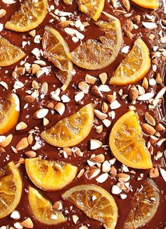Dark Chocolate Bark with Candied Oranges - Robust Recipes